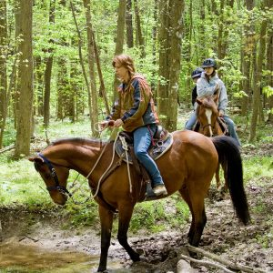 A group horseback riding through the woods
