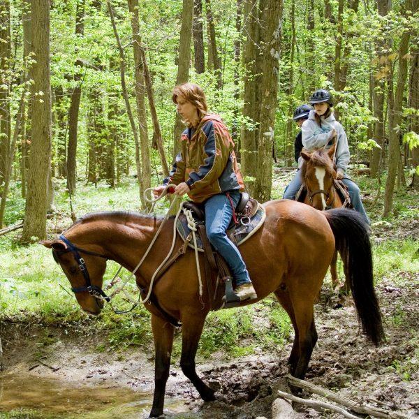 ACE-Adventure-Resort-Horseback-Riding-Trails
