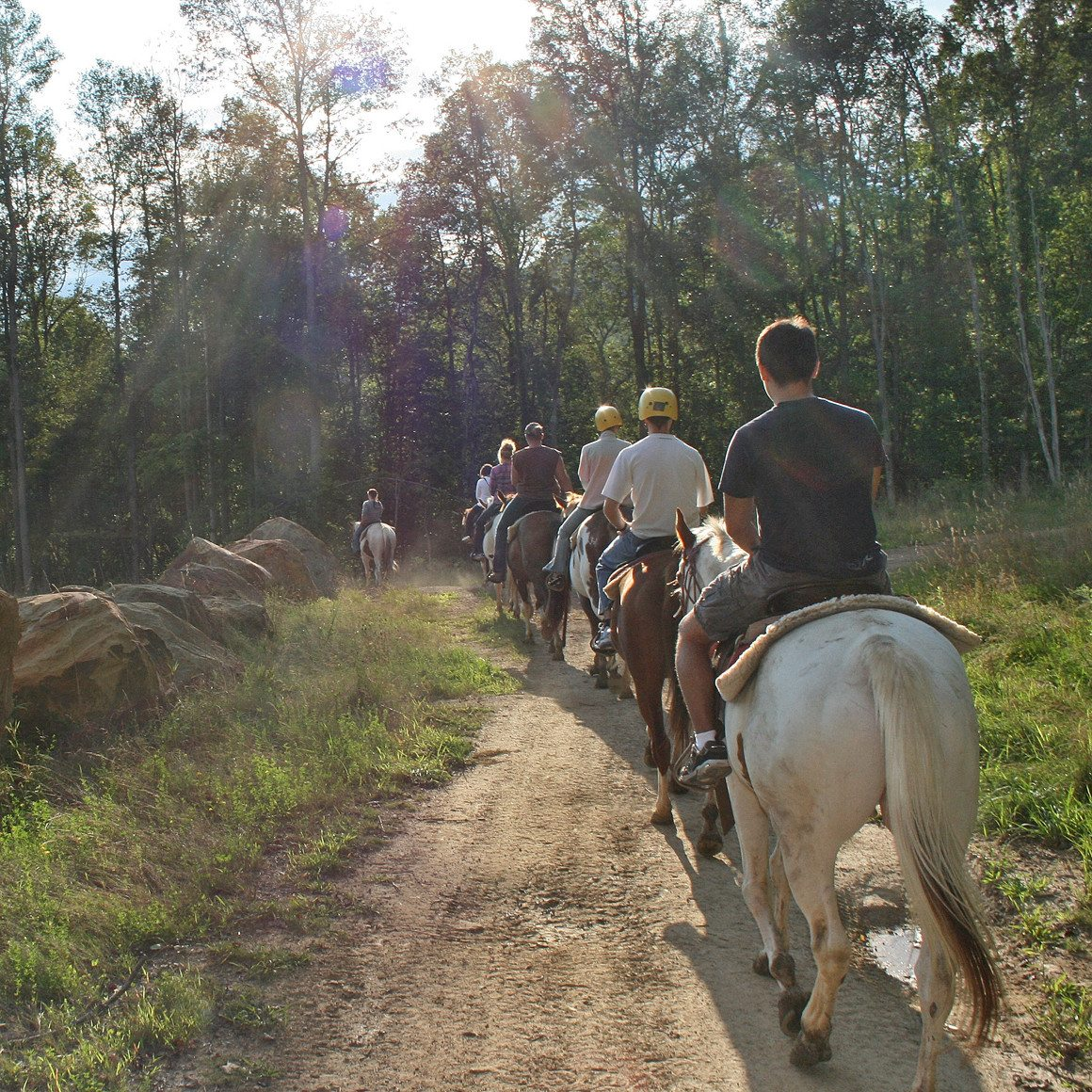 horseback riders make their way along a trail towards the woods