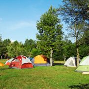 4 tents set up in the ACE Adventure resort campground