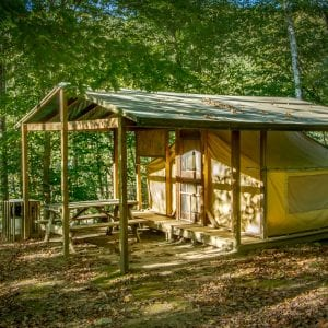 A cabin tent in the woods at ACE Adventure Resort