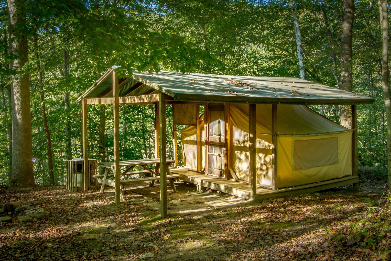 Cabin Tent