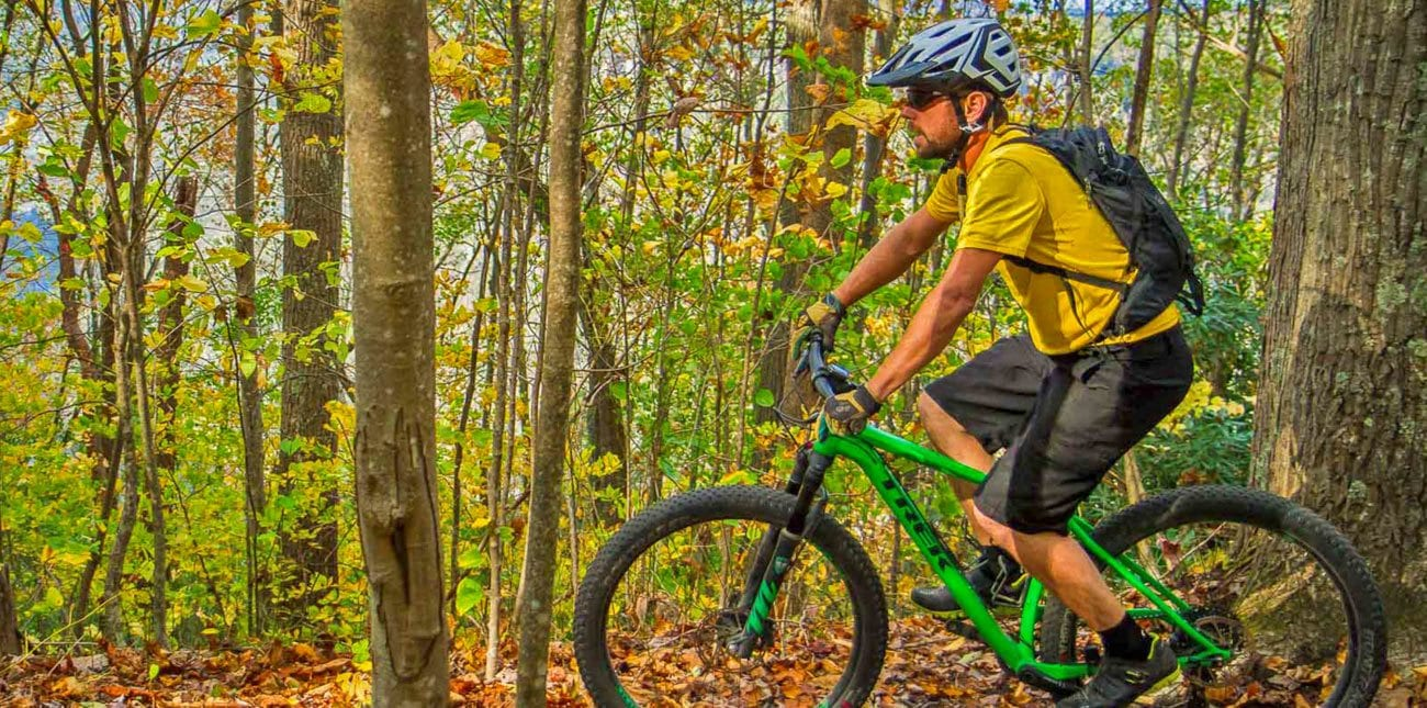 Man riding mountain bike through woods across ridge