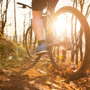 a mountainbiker rides into the sunset