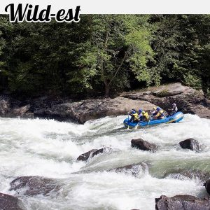 Rafters tackle the iron ring drop on the gauley river
