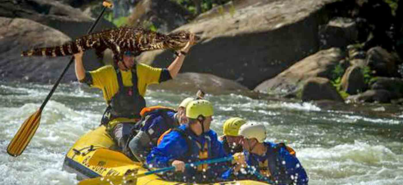 A whitewater rafter holds an alligator above his head while guiding a river trip in the New River Gorge.