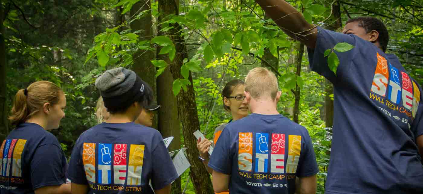 A youth group of STEM participants study trees as part of the ecology adventure course.