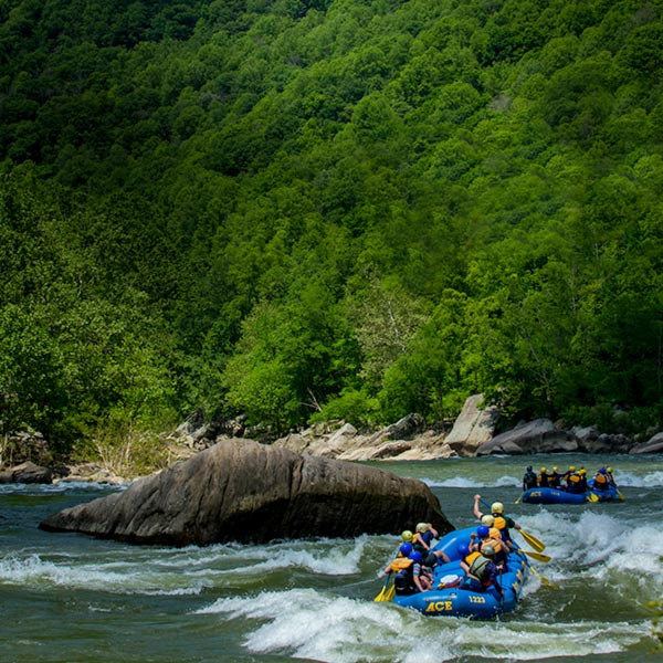 Two groups of rafters raft the gauley