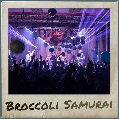 Broccoli Samurai playing at Mountain Music Festival