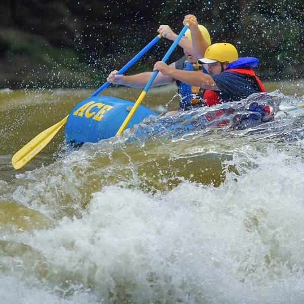 White water rafters on the new river hit a big wave with ace adventure resort.