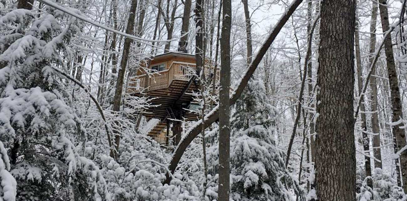 The tree house at Country Road cabins is surrounded by snow in the forest.