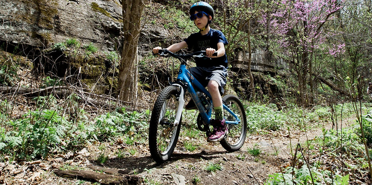Family-Friendly West Virginia Adventures at ACE's Kids Camp