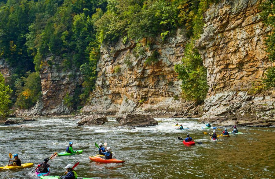 Group Whitewater Kayaking Clinic