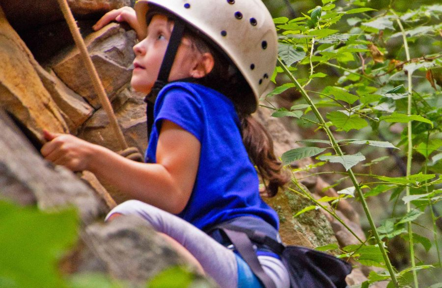 Upper New River Gorge Half Day Rock Climb And Rappel