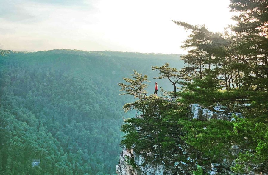 About New River Gorge Hiking