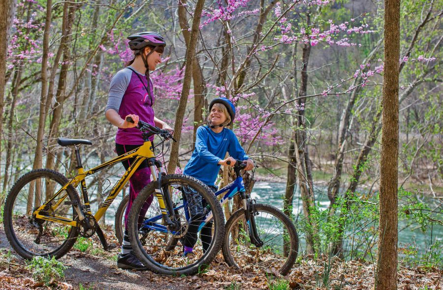 Half Day Guided Mountain Biking At ACE