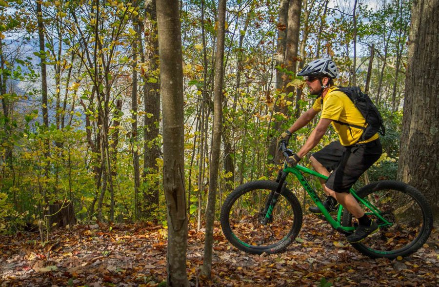 Full Day Guided Mountain Biking, Lower New River Gorge