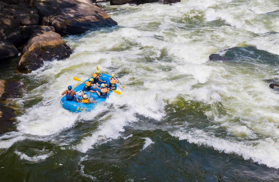 Lower New River Gorge + Half Price Lower Gauley