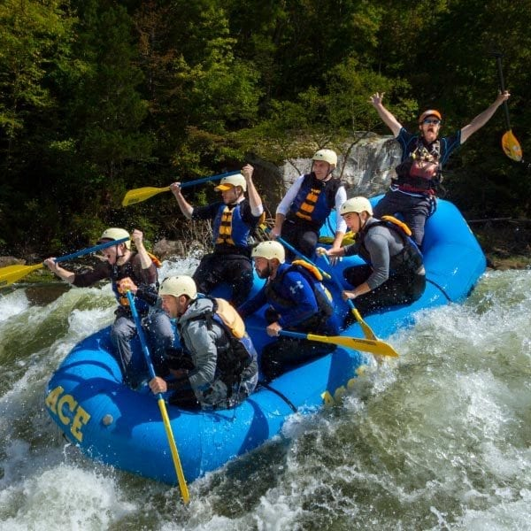 """FALL GAULEY """"DOUBLE FEATURE"""" FRIDAYS"""