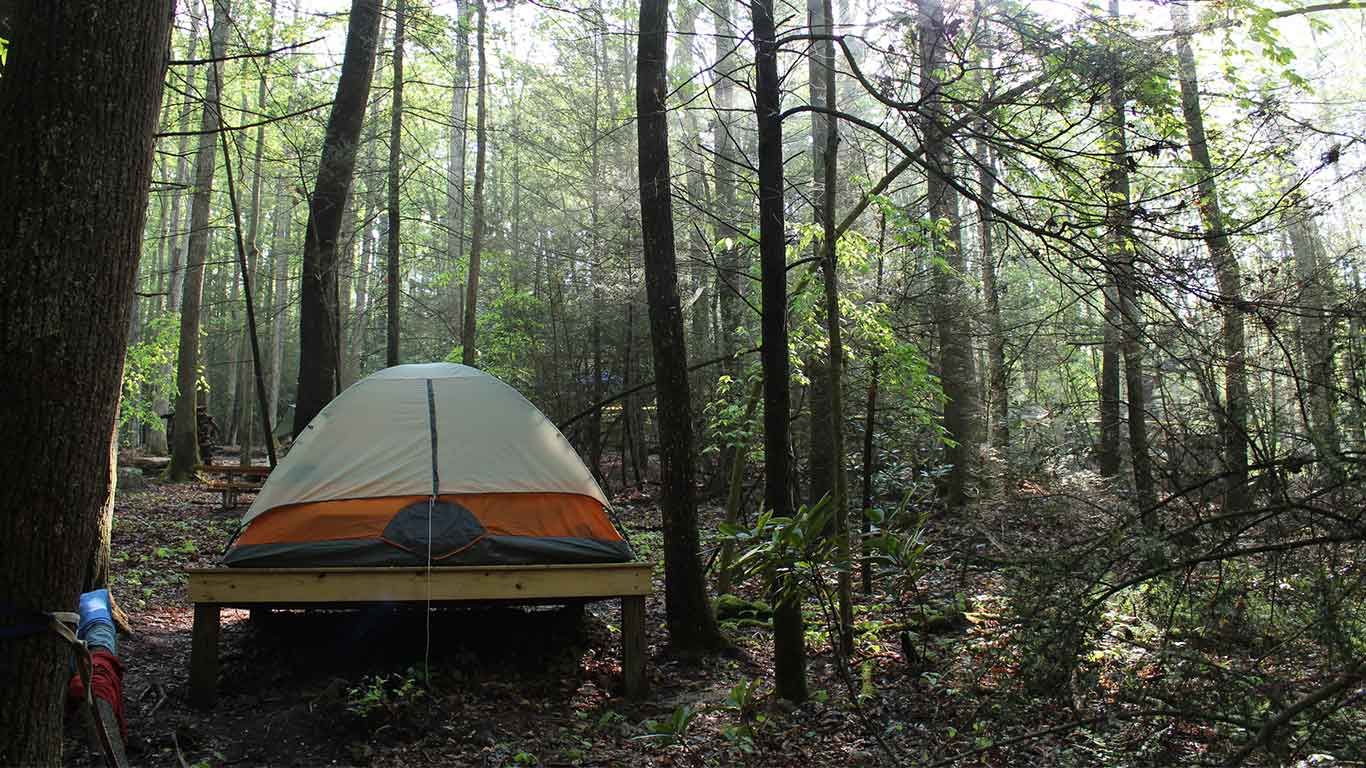New River Gorge Campground