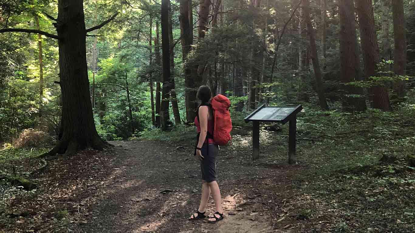 Hiker at Endless Wall Trail